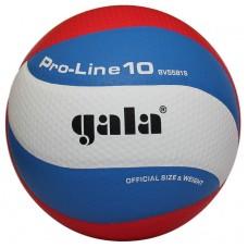 Tinklinio kamuolys PRO-LINE 10 BV5581S Replica