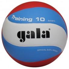 Tinklinio kamuolys Training 10 BV5561S