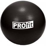 Gimnastikos kamuolys PROFIT 55cm su pompa DK 2102