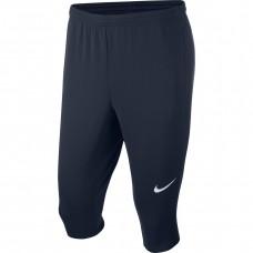 Kelnės Nike M Dry Academy 18 3/4 KPZ 893793 451