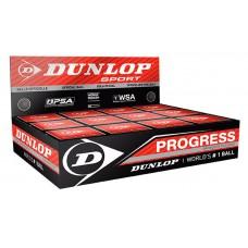 Skvošo kamuoliukas Progress 12-box,1raud.taš